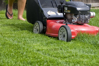 With Deadman Controls On Walk-Behind Power Lawn Mowers – Why Are Accidents Still Occurring?