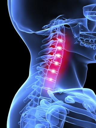 Biomechanical Vs. Medical Experts