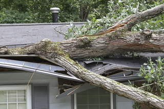 Storm-Related Structural Issues