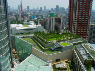 green roof_000000132606small