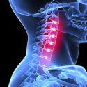 inside_neck