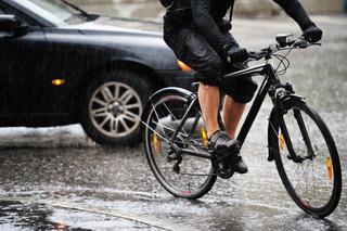 Bike Car_000014362314small