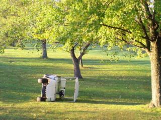 Golf Cart 000004298482
